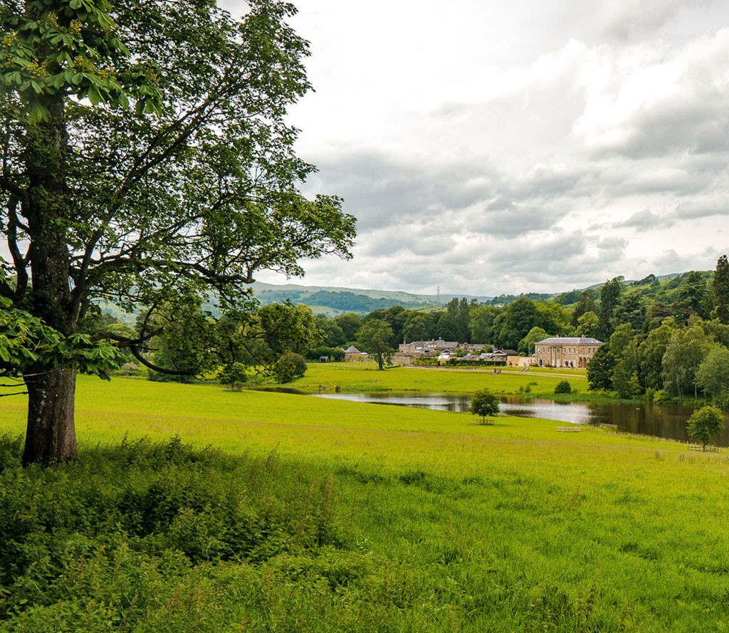Landscape View of the Rhug Wild Beauty Estate and Grounds
